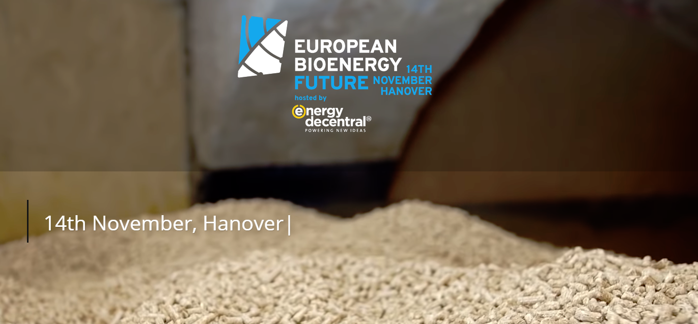 European Bioenergy Future